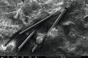 14 SEM image of sample NBFHb