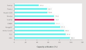 15 Capacity utilization by the TOP 10