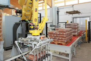 The Beumer robotpac series palletises and depalletises a wide variety of packaged goods with specially designed gripping systems<br />