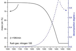 4 Comparison of the remaining mass and the degree of decomposition