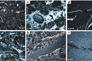 1 Petrographic analysis of carbonate rocks Symbols legend: Plane Polarized Light (PPL); Crossed Polarized Light (XPL)1a Microbial boundstone with clotted peloidal micrite-microsparite associated with large mm-sized equant and poikilotopic twinned calcite cement (1-IDW)<br />1b Nodular ammonite-bearing pelagic wackestone with thin-shelled bivalves, ostracods, pelagic foraminifera, i.e. protoglobigerins, and radiolarians (2-VER)<br />1c Subtidal-intertidal peloidal-fossiliferous packstone/grainstone passing to pisolitic rudstone, presenting fibrous-radial and equant calcite cements filling the intraclastic porosity (3-CR1)<br />1d Subtidal mudstone/wackestone with rare ostracods. Tensional fractures filled in by clear mosaic calcite cements (4-WOP) 1e Kerogen-rich floatstone/rudstone from different stromatoporoidal lithofacies. The fossiliferous content includes conodont, trilobites, large bivalves and rugose corals floating into abundant micritic matrix (5-SMA)<br />1f Reefoidal framestone/rudstone characterized by bryozoan-foraminifera-Corallinacean red algae association. Intraclastic porosity filled in by equant calcite cements (6-PSP)<br />1g Peloidal-fossiliferous packstone/grainstone with rugose corals, large bivalves and gastropods. Diagenetic dolomite replacements (7-PRO)<br />1h Coated-grain peloidal grainstone/packstone associated with mm-sized micritic intraclasts of rectangular shape, i.e. flat pebble conglomerate (8-EUR)<br />1i Very fine-grained calcitic marble with well-developed schistosity, grain orientation and sporadic stylolites (9-SIM)<br />1j Medium-up to coarse-grained calcitic marble with straight grain boundaries and no visible orientation (10-CAR)