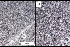 9 Petrographic microscope images of limestone (Zambia) sample Z (4 x magnification (E) plain polarised light and (F) cross polarised light)