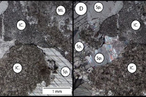7 Petrographic microscope images of limestone (Northern Cape) sample X (4 x magnification (C) plain polarised light and (D) cross polarised light)