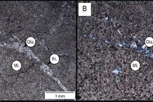 6 Petrographic microscope images of dolomite (Gauteng) sample W (4 x magnification (A) plain polarised light and (B) cross polarised light)
