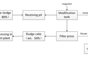 12 Process flowsheet of the Longwangzui sewage sludge project