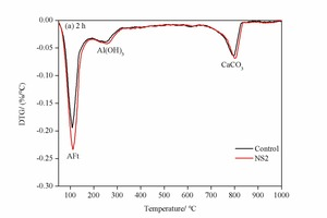 7 DTG analyses of the control sample and the NS2 sample at 2 h and 28 d