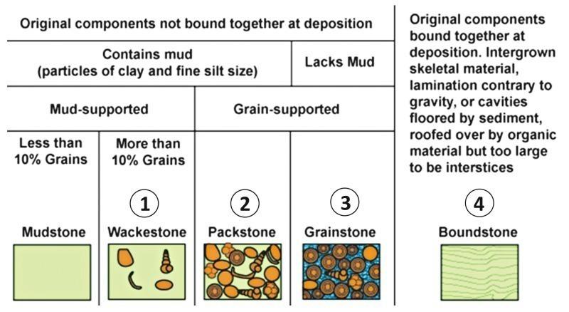 3 Classification of sedimentary carbonate rocks according to [1]. Symbols  legend: 1