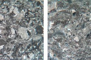 Mikogefüge des Kalksteins (Bildbreite 6,5 mm)