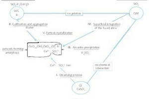 """<div class=""""bildtext_en"""">11 Components and their interaction in the coat formation</div>"""