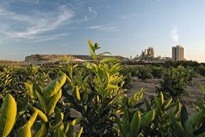 """<div class=""""bildtext_en"""">12 Alicante cement plant</div>"""
