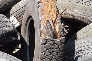 "<div class=""bildtext_en"">2 End-of-Life Tyres with iron containing carcasse</div>"