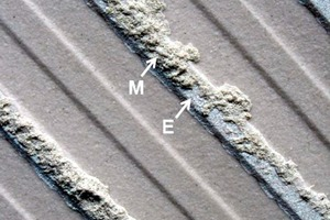 "<div class=""bildtext_en"">1 Typical example of an engobe acting as an adhesion promoter. Detail of a fracture pattern after an adhesion test (1.7 N/mm<sup>2</sup>) on a 5 cm x 5 cm test area that was cut from the centre of a 30 cm x 30 cm wall tile (porcelain stoneware) after seven months outdoor exposure. Application was done by the combined method and mortar residues (M; cohesion fracture) are only apparent along the engobe (E)</div>"