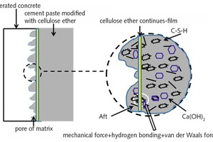 "<div class=""bildtext_en"">9 Microstructure model of interfacial transition region of thin layer cement paste modified with cellulose ether</div>"