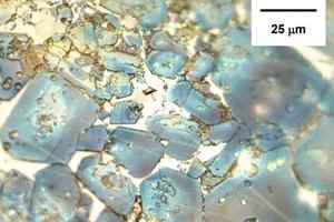 C3S-Kristalle unterschiedlicher Größe (von 10 bis 50 µm). Fast alle haben Einschlüsse (vorrangig C2S) und korrodierte Ränder (Klinker D).<br />