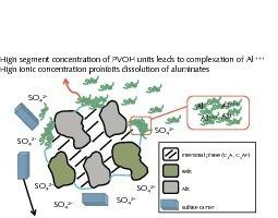 "<span class=""bildunterschrift_hervorgehoben"">6</span>Model of the effect of polyvinyl alcohols on the hydration of CEM I 42.5 N cement<br />"