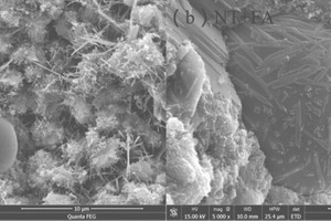 """<div class=""""bildtext_en"""">6 Scanning electron microscope (SEM) photographs of samples FA and NT+FA after hydration for 28 d</div>"""