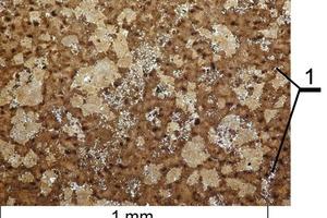 Mikrogefüge des Branntkalks aus dem Trias-Kalkstein mit Makrorissen durch die thermische Zersetzung (1)<br />