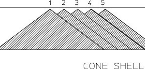 1 Illustration of the cone-shell method