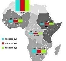 "<div class=""bildtext_en"">1 Development of the PCC in Africa</div>"