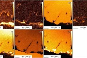"""<span class=""""bildunterschrift_hervorgehoben"""">12</span>1.4864, 200 h, 1000°C, Cl<sub>2</sub>, microprobe<br />"""
