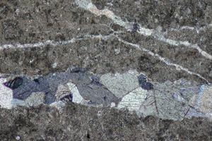 Mikrogefüge des Jura-Kalksteins mit einem Band großer Calcit-Kristalle<br />