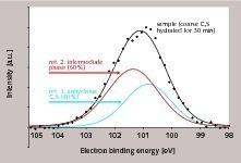XPS-Analyse einer C<sub>3</sub>S-Probe nach 30min Hydratation (Einzelpunkte, Datenfit und Beitrag der Referenzen zum Gesamtpeak)
