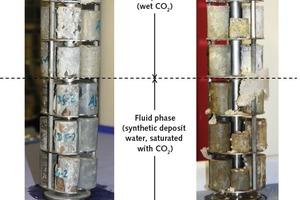 Erscheinungsbild der Zementprobenkörper nach 6 Monaten Lagerung in CO<sub>2</sub> bei 90°C und 400 bar Druck