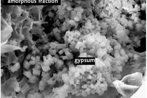 REM-Aufnahme der Mikrostruktur einer HOS [1]<br />