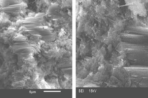 """<div class=""""bildtext_en"""">4 SEM images of 28 day hydrated (a) PPC and (b)COM-2</div>"""