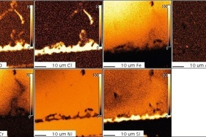 1.4862, 200 h, 1000°C, Cl<sub>2</sub>, Mikrosonde<br />