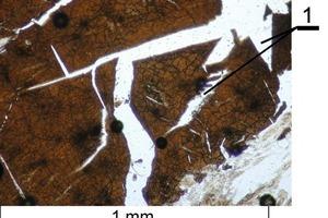 Mikrogefüge des Branntkalks aus dem präkambrischen Kalkstein mit Mikrorissen durch die thermische Zersetzung (1-Makrorisse)<br />