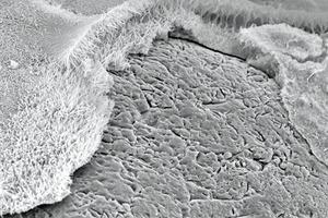 CSH-Phasen in Kalksandsteingefüge (REM-Aufnahme)