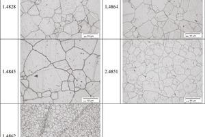 Ergebnisse nach Auslagerung in reduzierender Atmosphäre für 100h, LOM, 500x<br />
